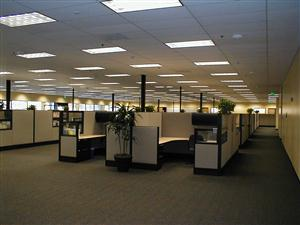 Cubicle Filled Rooms